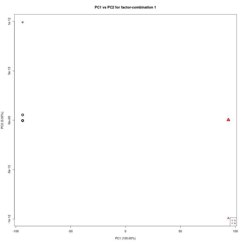temp-projected_scores-plot